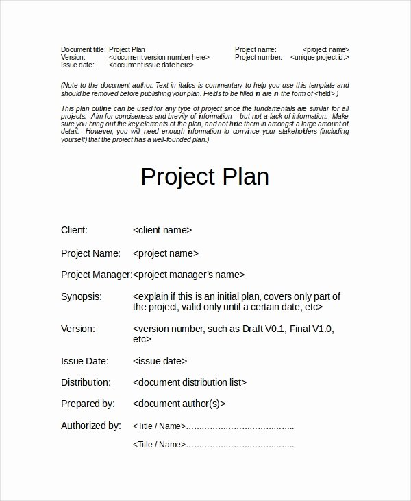 Basic Project Plan Template Best Of Project Plan Template 12 Free Word Psd Pdf Documents