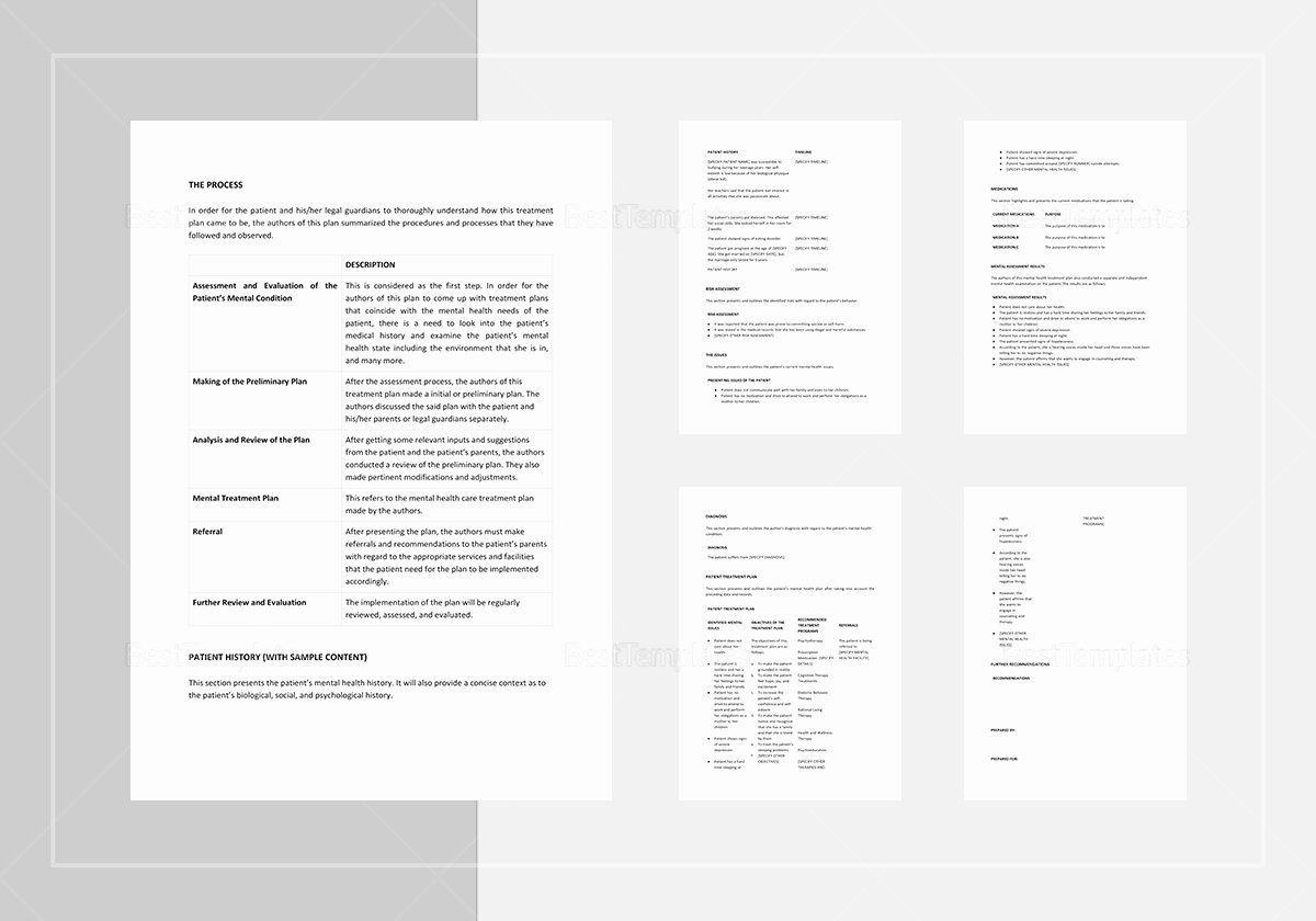 Behavioral Health Treatment Plan Template Fresh Mental Health Treatment Plan Template In Word Apple Pages