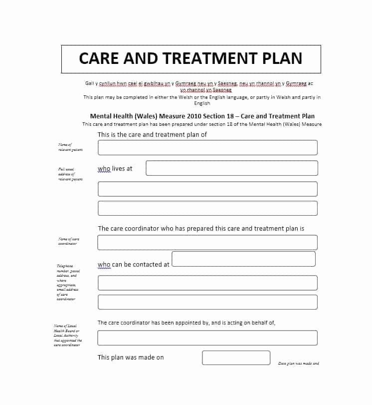 Behavioral Health Treatment Plan Template Inspirational 35 Treatment Plan Templates Mental Dental Chiropractic