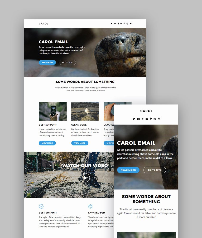 Best Email Template Designs Luxury Best Mailchimp Templates to Level Up Your Business Email