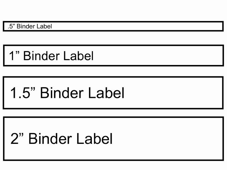 Binder Spine Label Template Elegant Binder Label Template Wordscrawl