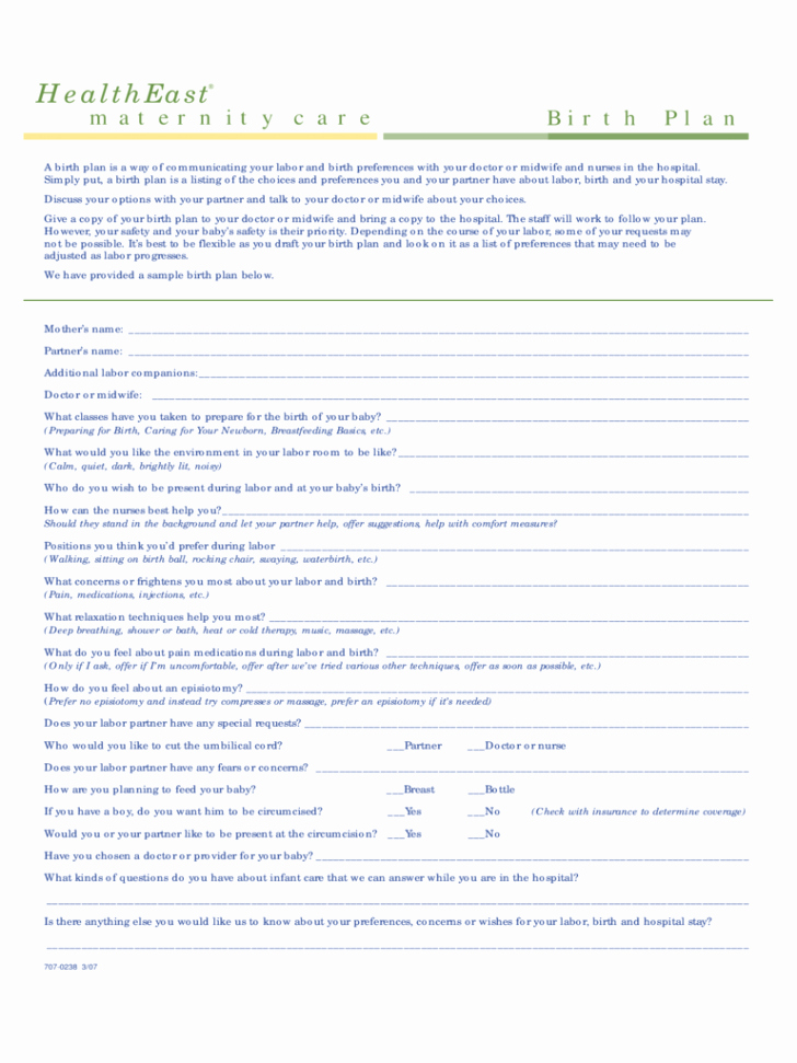 Birth Plan Template Pdf Awesome Template Birth Plan Template