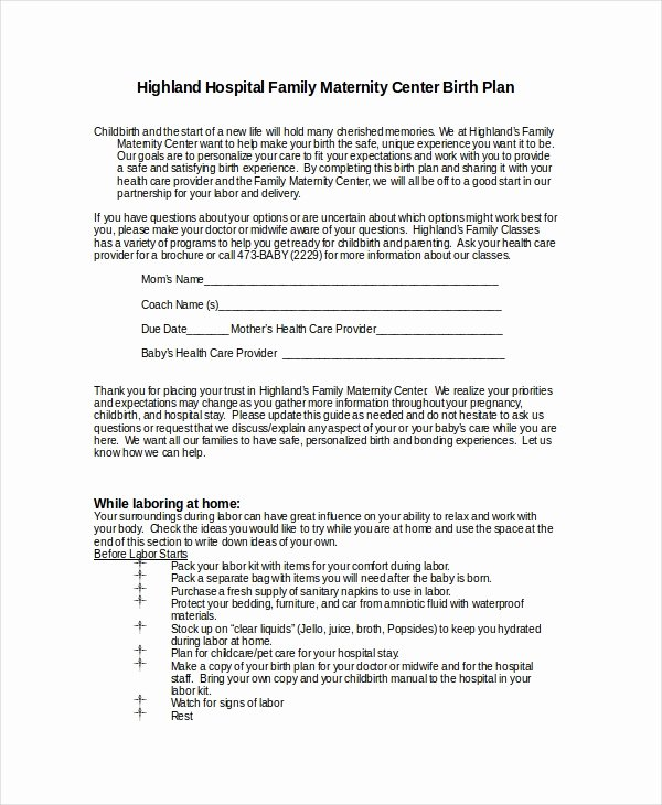 Birth Plan Template Pdf Beautiful Birth Plan Template 9 Free Word Pdf Documents Download