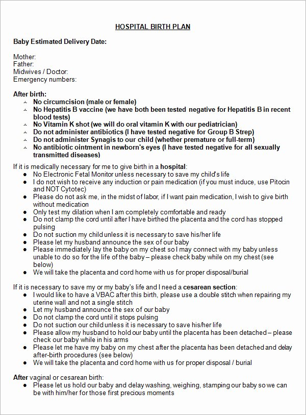 Birth Plan Template Pdf Best Of 22 Sample Birth Plan Templates – Pdf Word Apple Pages