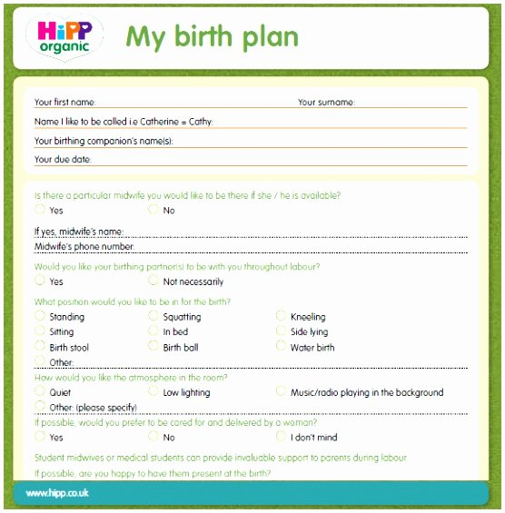 Birth Plan Template Pdf Elegant 5 Birthing Plans Template Uutpy