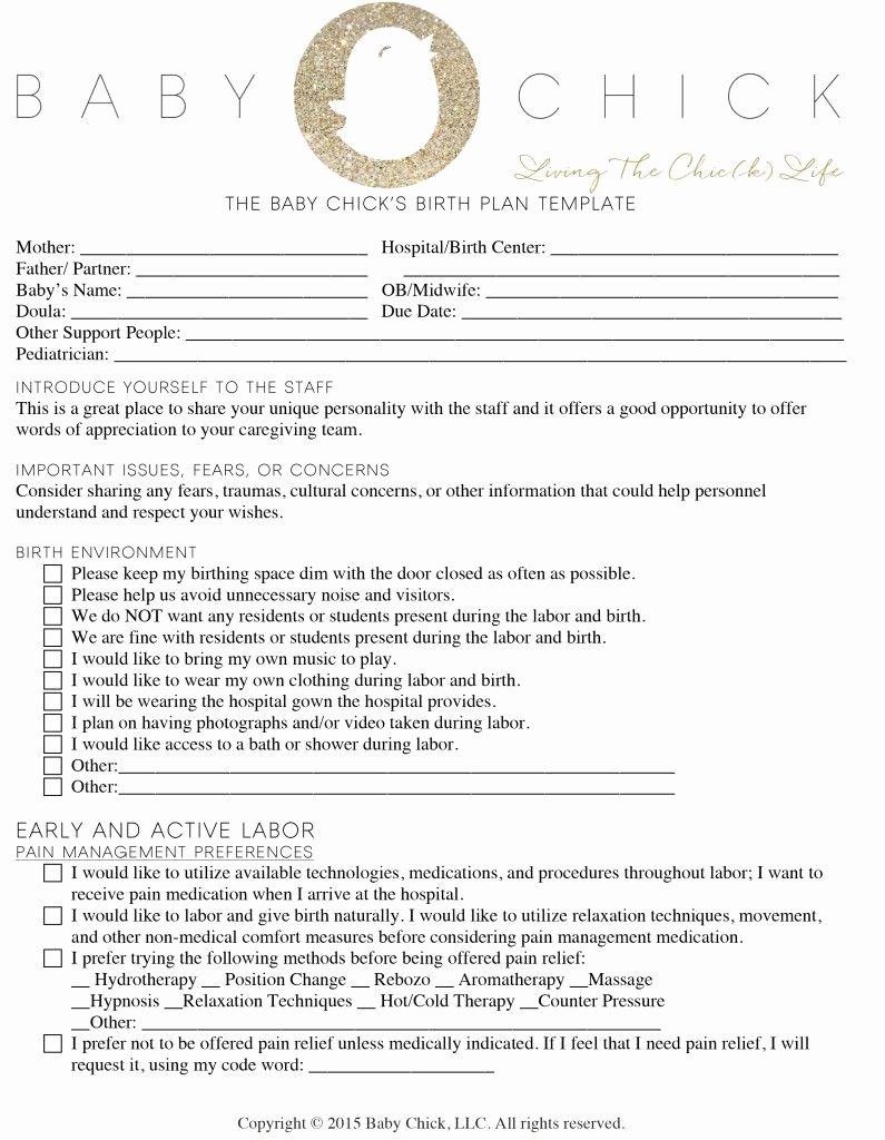 Birth Plan Template Pdf Elegant How to Create Your Perfect Birth Plan Books