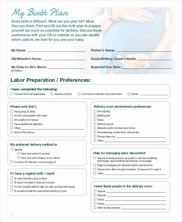 Birth Plan Template Pdf Inspirational Birth Plan Template 15 Free Word Pdf Documents
