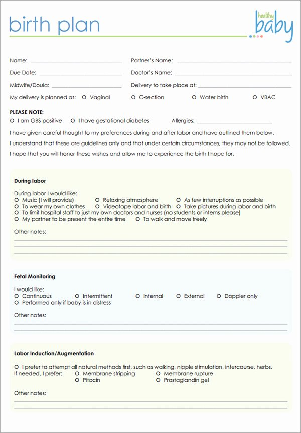 Birth Plan Template Pdf Luxury 22 Sample Birth Plan Templates – Pdf Word Apple Pages