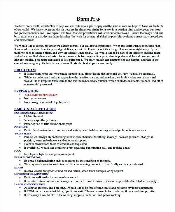 Birth Plan Template Word Document Fresh Birth Plan Template Word Document Unique Free Documents