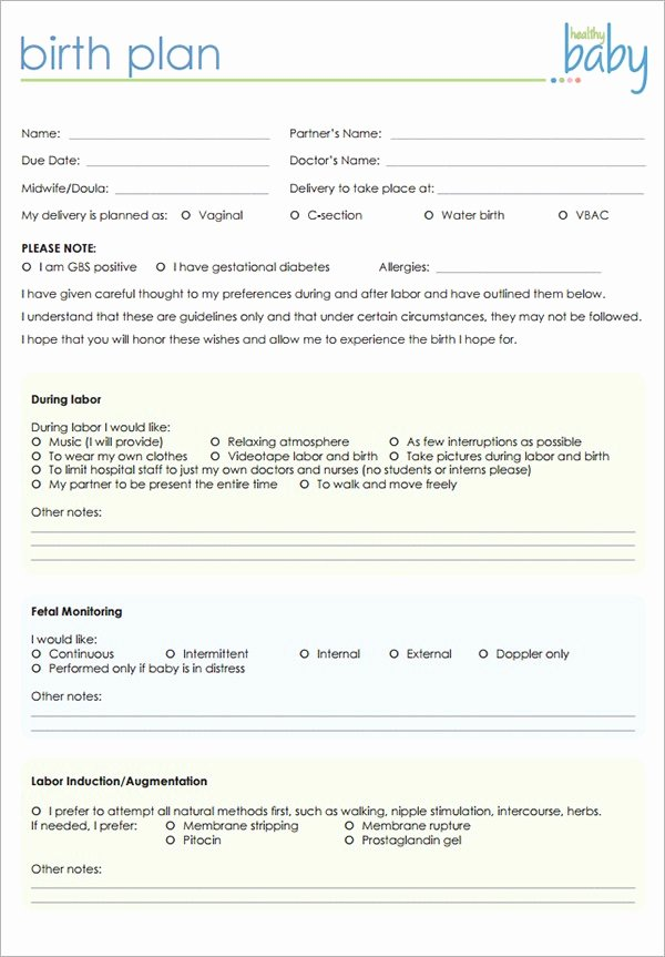 Birth Plan Template Word Document Lovely Birthing Plan Template