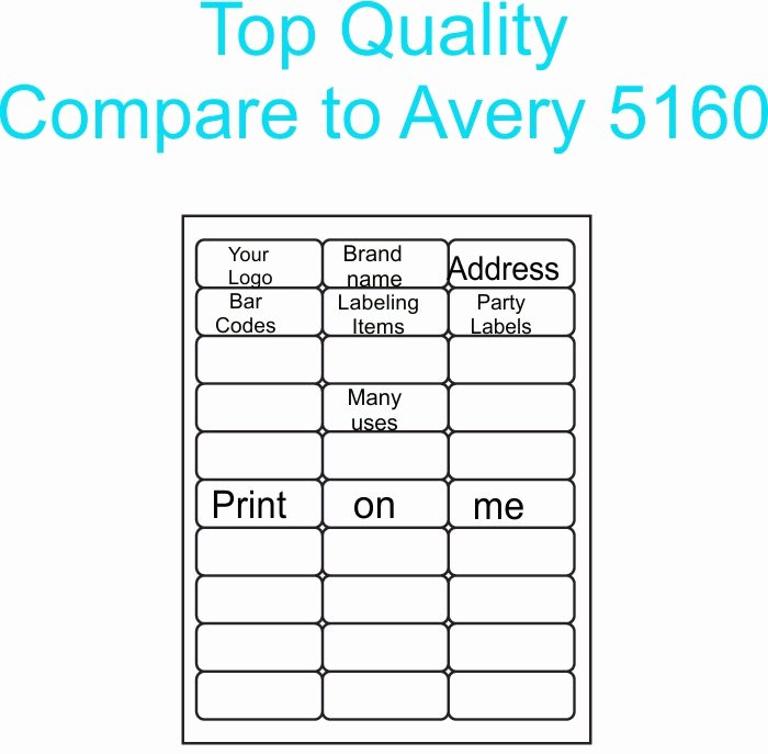 Blank Address Label Template Luxury 300 Blank Address Labels 10 Sheets for Etsy Labels 1 X