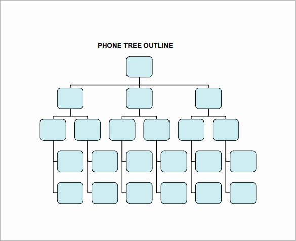 Blank Phone Tree Template Lovely 12 Printable Phone Tree Templates Doc Excel Pdf
