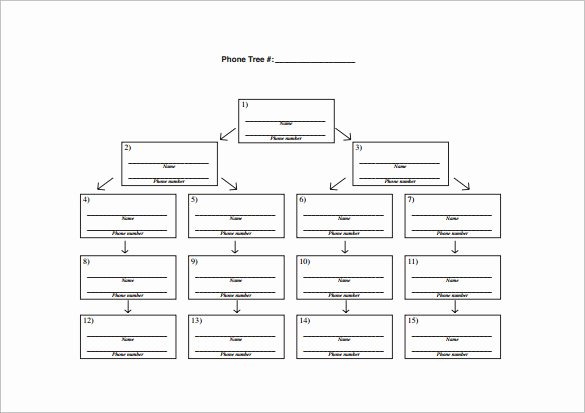 Blank Phone Tree Template Luxury 12 Printable Phone Tree Templates Doc Excel Pdf
