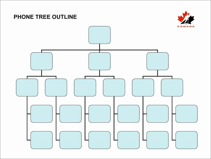 Blank Phone Tree Template Luxury 15 Printable Phone Tree Template Free Download
