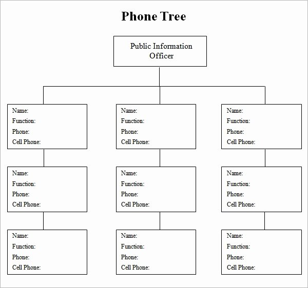 Blank Phone Tree Template Luxury Phone Tree Template