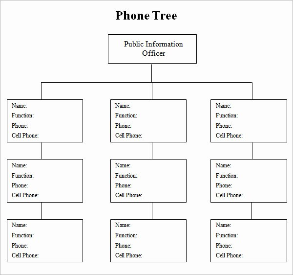 Blank Phone Tree Template New 4 Sample Phone Tree Templates to Download