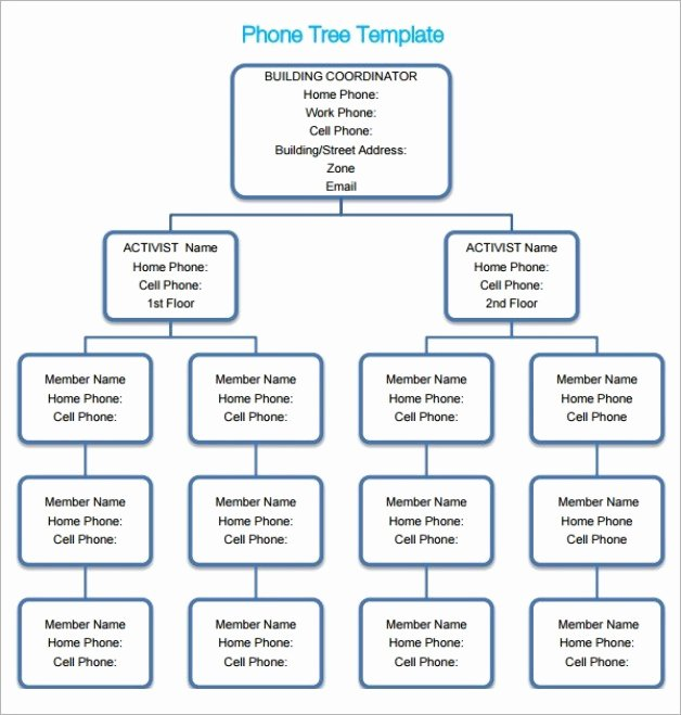 Blank Phone Tree Template New 5 Free Phone Tree Templates Word Excel Pdf formats