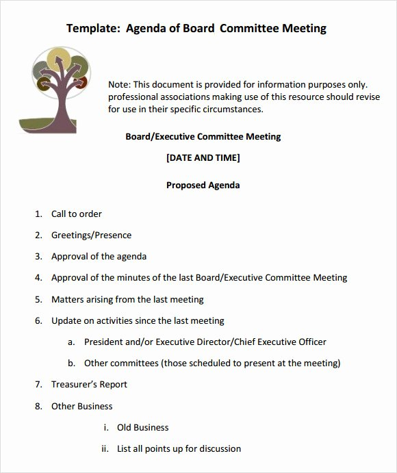 Board Meeting Agenda Template Unique Sample Board Meeting Agenda Template 11 Free Documents