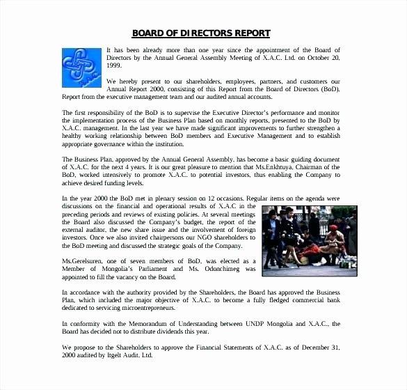 Board Of Directors Report Template Fresh Monthly Executive Report Template Monthly Summary Report
