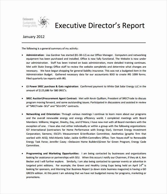 Board Of Directors Report Template Luxury Executive Report Template 13 Free Sample Example