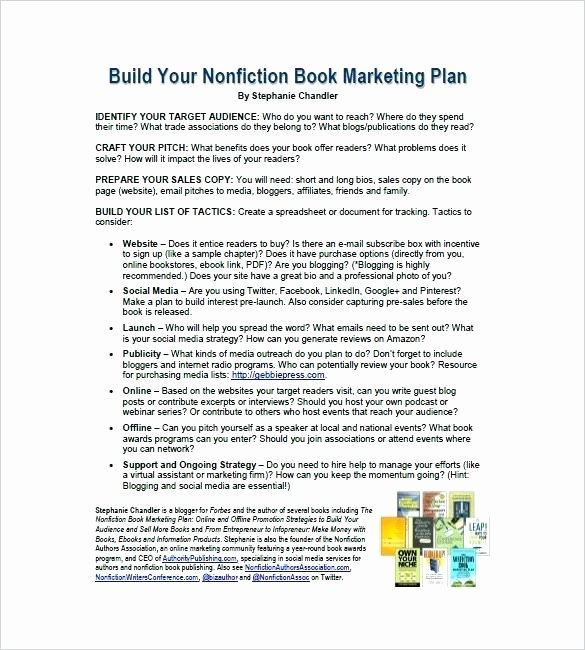 Book Marketing Plan Template Beautiful Marketing Strategy Document Template Plan Example Doc the