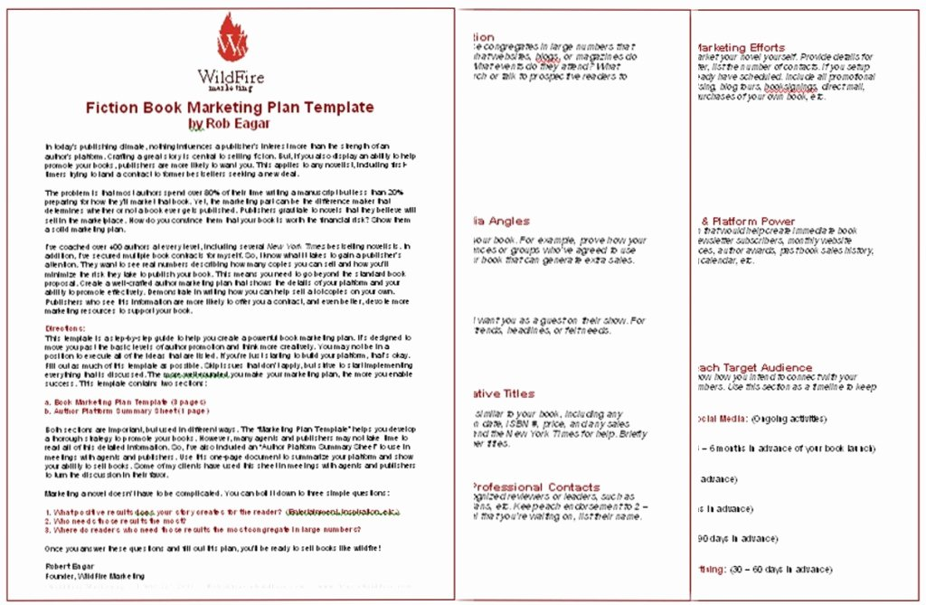 Book Marketing Plan Template Inspirational Book Marketing Plan Template for Authors