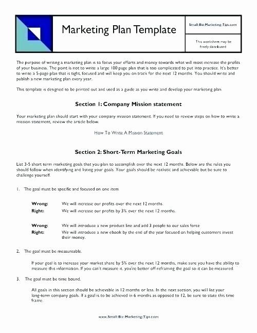 Book Marketing Plan Template Luxury Apartment Marketing Plan Template Free Download Word