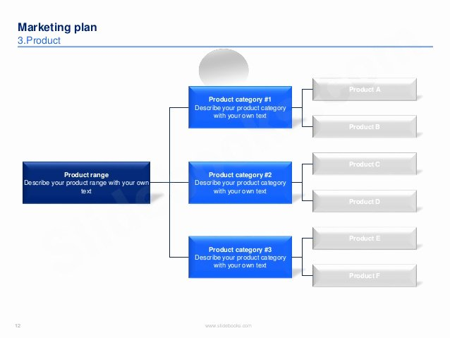 Book Marketing Plan Template New Marketing Plan Template In Powerpoint