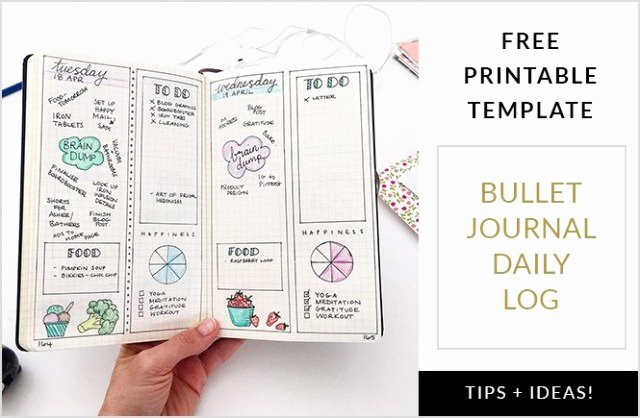 Bullet Journal Excel Template Beautiful Daily Log Template Free Download 20 High School