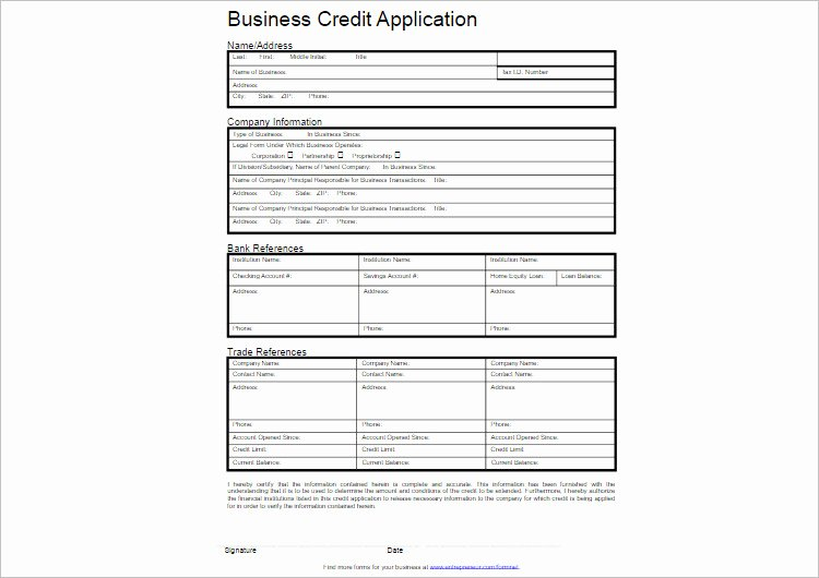 Business Credit Application Template Elegant 24 Credit Application form Templates Free Word Pdf formats