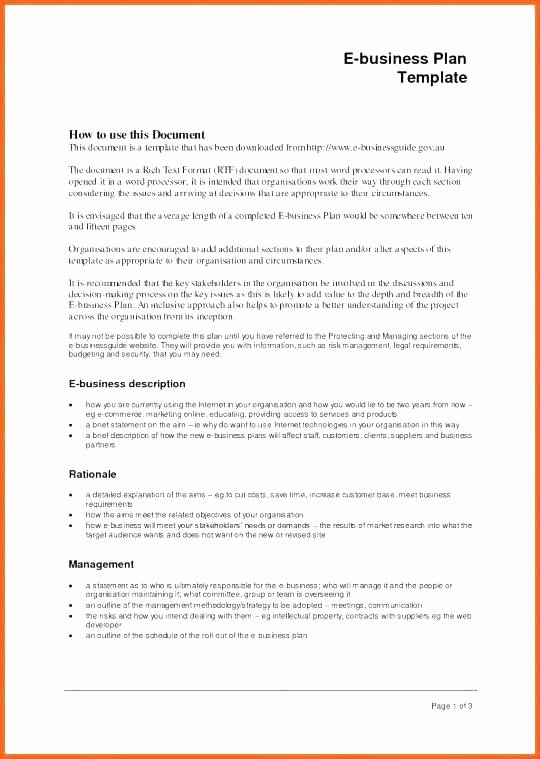 Business Exit Strategy Template Unique Exit Strategy Template Free Business Plan Exit Strategy