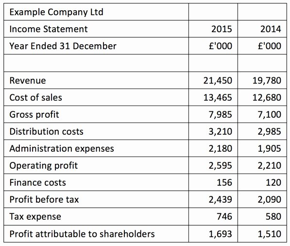 Business Income Statement Template Lovely In E Statement Introduction