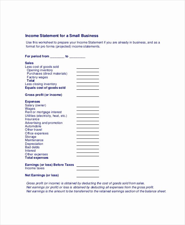 Business Income Statement Template Luxury In E Statement Free Pdf Excel Word Documents