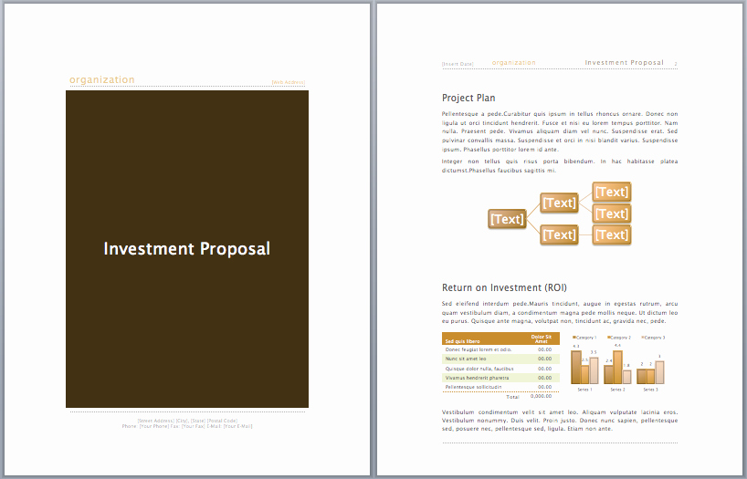 Business Investment Proposal Template Beautiful Investment Proposal Template Microsoft Fice Templates