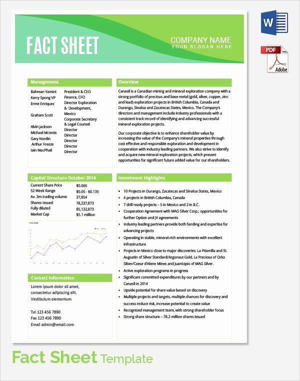 Business One Sheet Template Beautiful Sample Fact Sheet Template 21 Free Download Documents