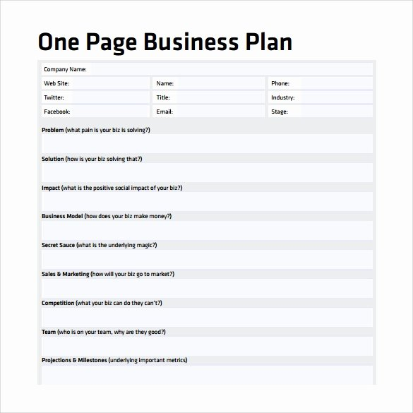Business One Sheet Template Elegant 10 E Page Business Plan Samples