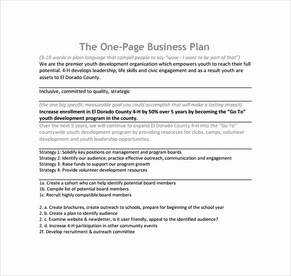 Business One Sheet Template Inspirational E Page Business Plan Template