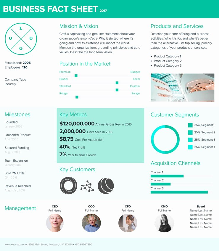 Business One Sheet Template New How to Create A Fact Sheet