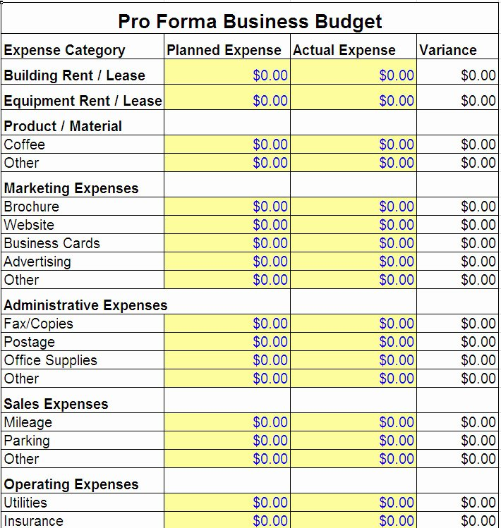 Business Plan Budget Template Best Of Pro forma Business Bud Template