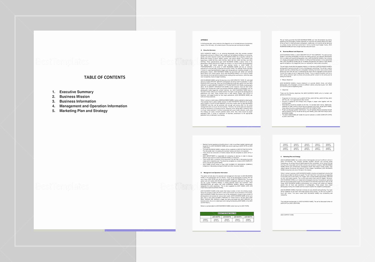 Business Plan Template Pages Mac Fresh Graphy Business Plan Template In Word Google Docs