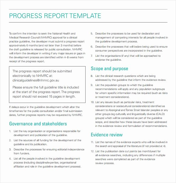 Business Progress Report Template Awesome 11 Sample Progress Reports