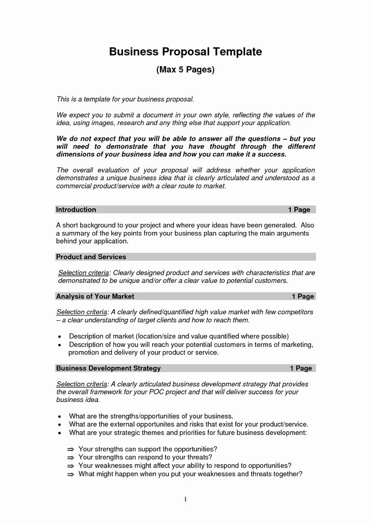 Business Project Plan Template Awesome Best 25 Business Proposal Examples Ideas On Pinterest
