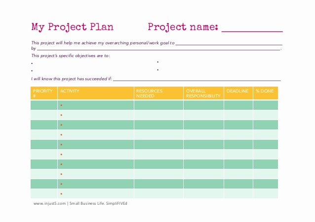 Business Project Plan Template Luxury Small Business Project Plan Template