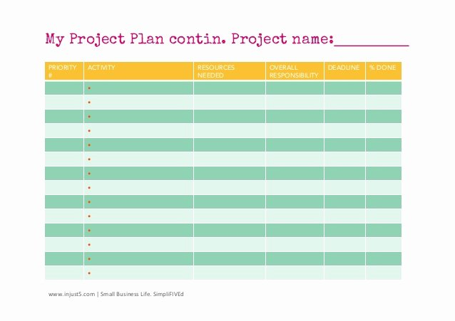 Business Project Plan Template New Small Business Project Plan Template
