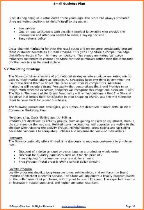 Business Project Plan Template Unique 5 Small Business Plan Proposal