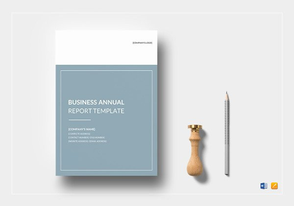 Business Report Template Word Elegant 17 Business Report Examples Pdf Word