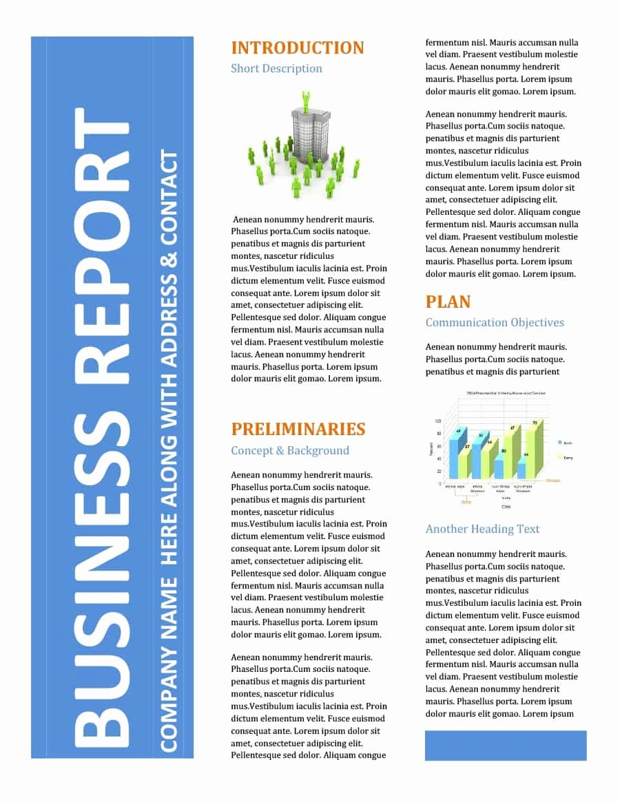 Business Report Template Word Luxury 30 Business Report Templates & format Examples Template Lab