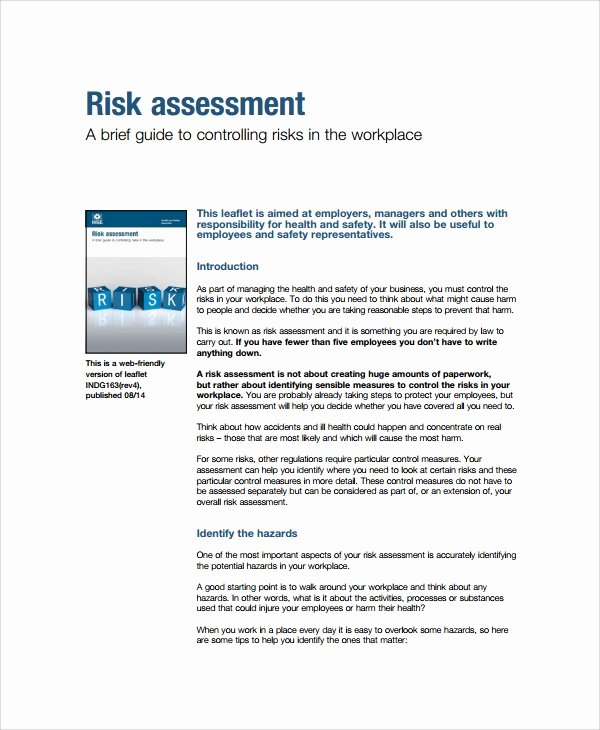 Business Risk assessment Template Luxury 8 Sample Business Risk assessments