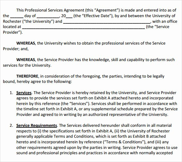 Business Service Contract Template Awesome Sample Professional Services Agreement 12 Free In Pdf Word