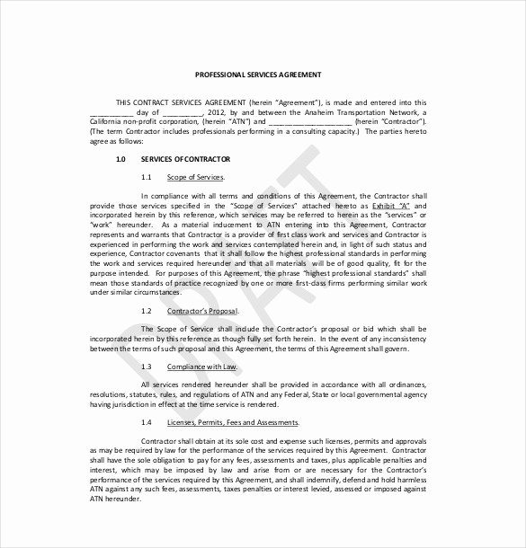 Business Service Contract Template Luxury 35 Service Agreement Templates Word Pdf